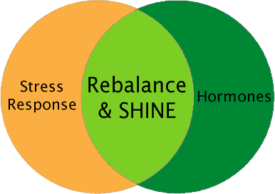 Where stress response and hormones meet with Rebalance and SHINE